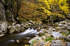 Wild mountain river with small waterfall in fall royalty free stock photos