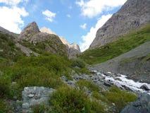 Wild mountain stream in a steep slope Royalty Free Stock Photos