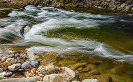 Wild Mountain Trout Stream stock photo