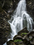 Wild mountain waterfall in the rocks Stock Photography