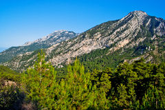 Wild mountains Stock Images
