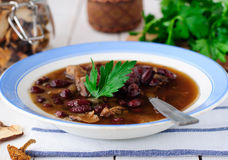 Wild Mushroom and Kidney Bean Soup Stock Image