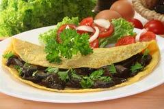 Wild Mushroom omelet Stock Image