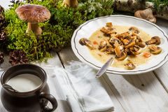 Wild mushroom soup and moss royalty free stock images