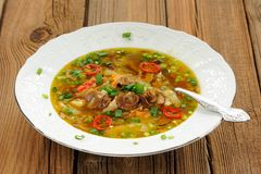 Wild mushroom and vegetable soup with chili in white plate Stock Photos