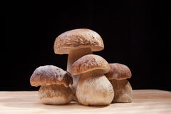 Wild mushrooms. Four mushrooms on the wooden board Stock Image