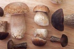 Wild Mushrooms. Studio shoot of wild mushrooms on the kitchen desk Royalty Free Stock Images