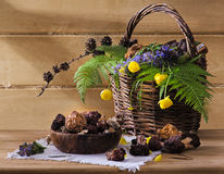 Wild mushrooms in a basket for cooking. Wild mushrooms with flowers in a basket Royalty Free Stock Image