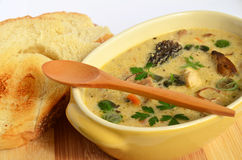 Wild mushrooms cream soup 2. Cream soup prepared of chicken meat and lot of sorts of wild mushrooms, spiced with fresh, green herb spices and served in rustic Stock Photo