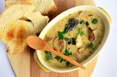 Wild mushrooms cream soup 1. Cream soup prepared of chicken meat and lot of sorts of wild mushrooms, spiced with fresh, green herb spices and served in rustic Stock Image