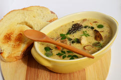 Wild mushrooms cream soup 5. Cream soup prepared of chicken meat and lot of sorts of wild mushrooms, spiced with fresh, green herb spices and served in rustic Royalty Free Stock Photos