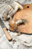 Wild mushrooms on cutting board Royalty Free Stock Photo