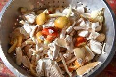 Wild mushrooms for food Stock Photos