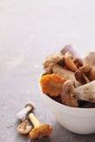 Wild mushrooms Royalty Free Stock Image