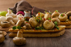 Wild mushrooms on toast Royalty Free Stock Image