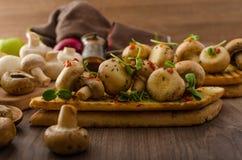 Wild mushrooms on toast Royalty Free Stock Image