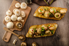 Wild mushrooms on toast Stock Image