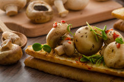 Wild mushrooms on toast Stock Photography