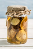 Wild mushrooms in vinegar in a jar Royalty Free Stock Image