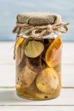 Wild mushrooms in vinegar in a jar Royalty Free Stock Image