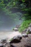 wild natur Arkivbild