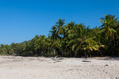 Wild Natural Beach Costa Rica, Santa Teresa Stock Photos