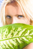 Wild By Nature. Young Beautiful Blonde Girl With Stunning Blue Eyes Looks Out From Behind Large Green Leaf With Expression Of Mystery And Untamed Passion Stock Image