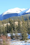 Wild nature in canadian rockies. Jasper national park, alberta, canada, good sunny weather Stock Photo