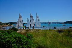 Wild nature landscape with plants and blue sky and three sailing boats. With some people royalty free stock images