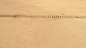 Wild nature landscape yellow sand desert surface. Wild nature landscape. Yellow sand desert surface stock footage
