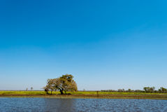Wild nature near Kakadu National Park Royalty Free Stock Images