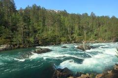 Wild nature in Norway Stock Photos