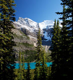 Wild nature in Rocky Mountains stock images