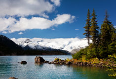 Wild nature in Rocky Mountains royalty free stock images