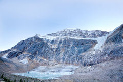 Wild nature in Rocky Mountains,Angel Glacier Jasper National Park Stock Images