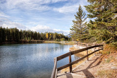 Wild nature in Rocky Mountains,Lake Shore trail Stock Image