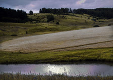 Wild nature of Russia in the summer Stock Photography