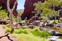 Wild nature at Simpsons Gap Royalty Free Stock Image