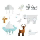 Wild north arctic animals symbols vector. Stock Photos