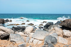 Wild north coast from Aruba island Royalty Free Stock Photo