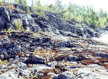 Wild north nature landscape. lot of rocks on lake shore post car Stock Image
