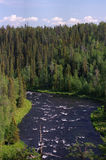 Wild Northern river. Wild area from North of Europe Royalty Free Stock Images