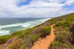 Wild oceaanoeverzeegezicht met dichtbegroeide helling Royalty-vrije Stock Afbeeldingen