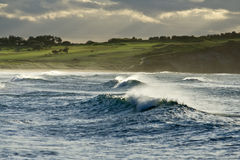 Wild Ocean. Waves and golf course at the distance royalty free stock photos