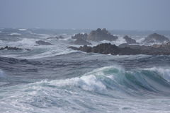 Wild ocean. Waves at stormy weather Stock Image