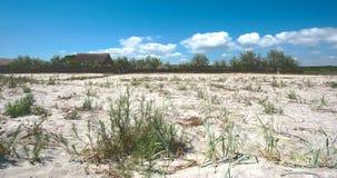Wild och tom strand Arkivfoton