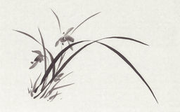 Wild orchid black ink painting Stock Photography