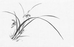 Wild orchid black ink painting. On old rise paper. Traditional Chinese painting Royalty Free Stock Photography