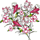 Wild orchids. Tropical hand-drawn floral arrangement with orchids and lilly's Stock Photos