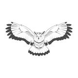 Wild owl emblem black and white vector Stock Photo